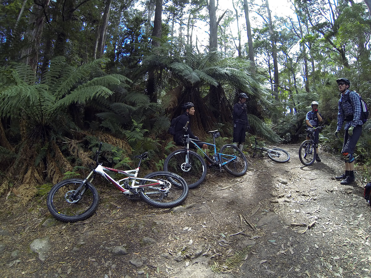 blue-dirt-tasmania-mtb-tour-2