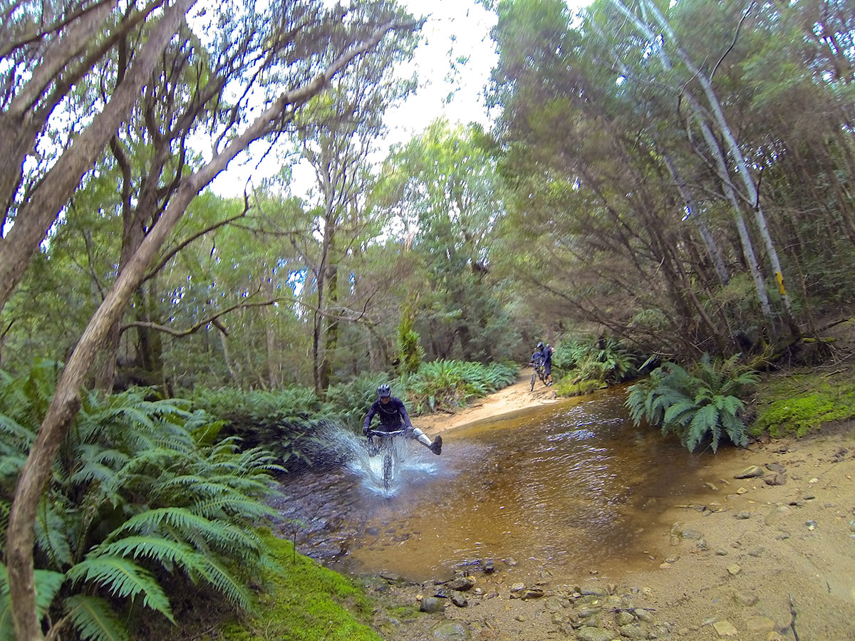 blue-dirt-tasmania-mtb-tour-3